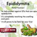 Natural Remedies for Epididymitis Stop Bacterial Infections