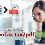 Amazing Steps to Convert TurboTax tax2pdf – American Article