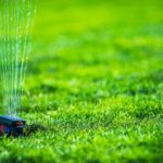 How to Know if You Need a Professional Landscaping Service
