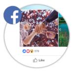 Buy Real Facebook Album Likes  BuySocialBuzz