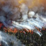 Electrical Utility Wildfire Mitigation in the New Norm