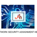 Are you in need of Network Security Assignment Help?
