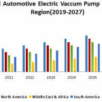 Global Automotive Electric Vaccum Pump Market